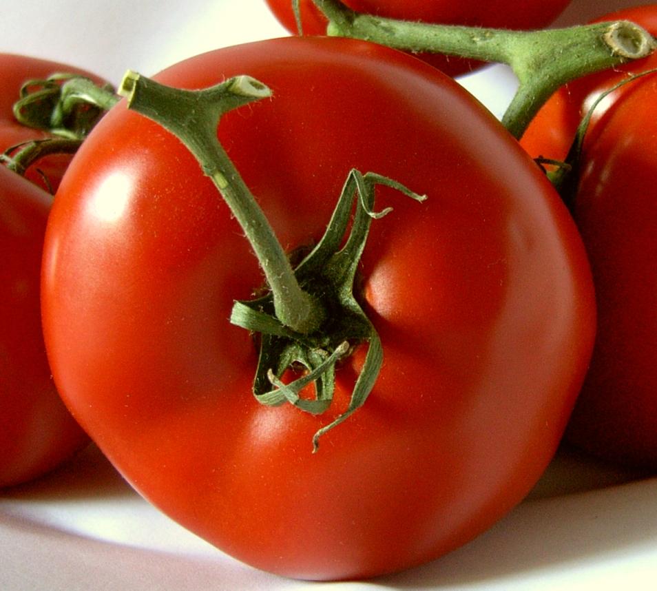 En nem og skøn sommermenu med rødspætte, tomatsalat og jordbær