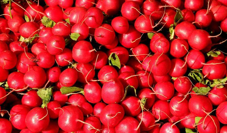 Aalborg Fødevarefællesskab fejrer nye lokaler onsdag d. 11/10
